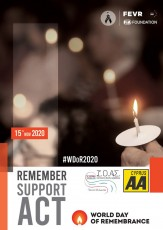 World Day of Remembrance for the Road Traffic Victims (15/11)